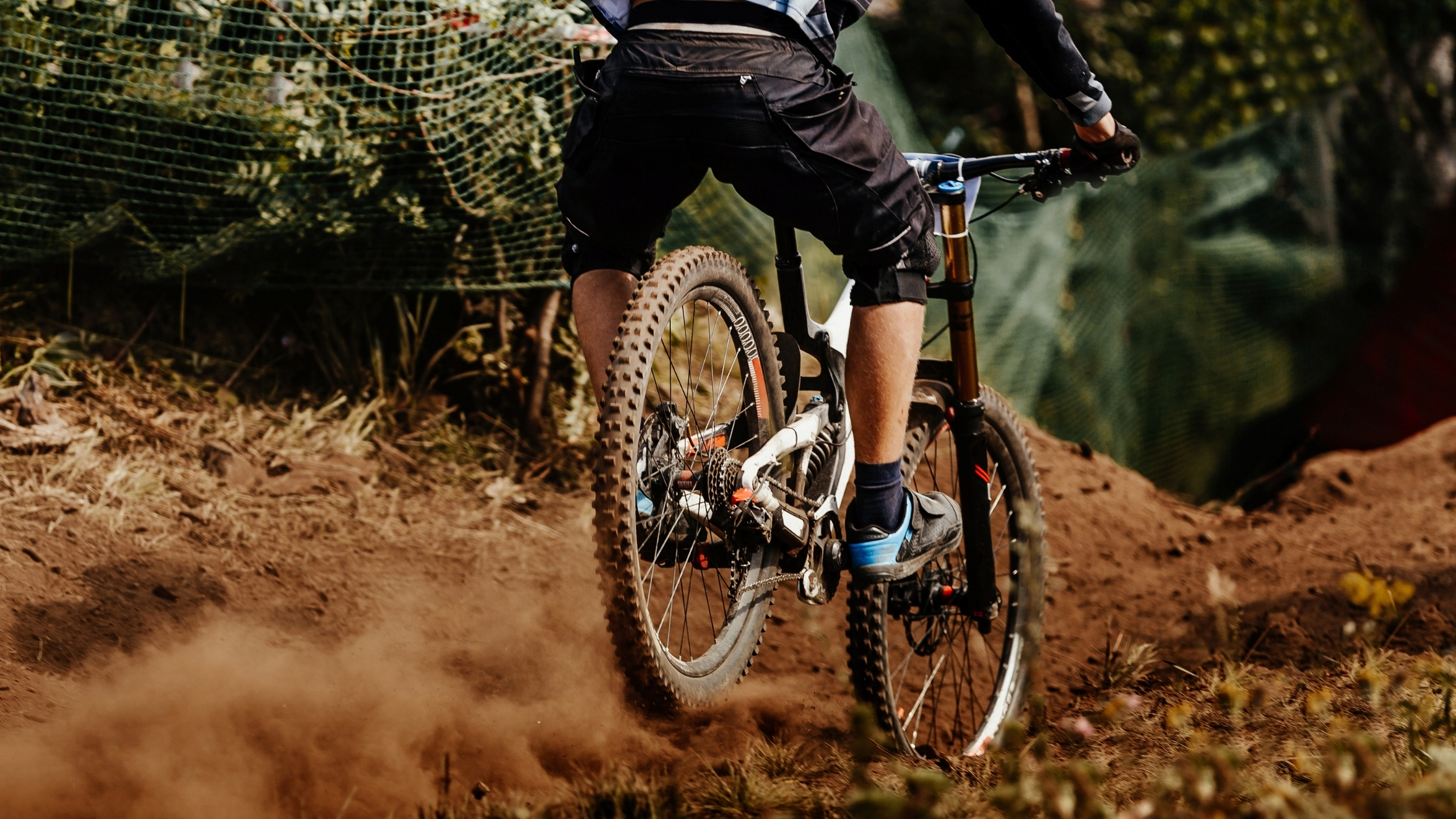 How Much Does it Cost to Rent a Mountain Bike